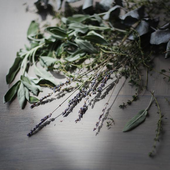 Rosemary, sage, lavender